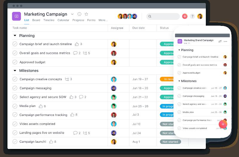 best project management software - asana interface